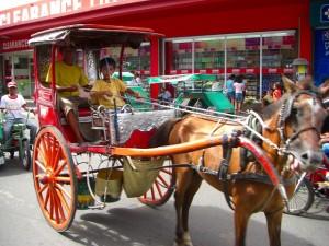 チャイナタウンでは馬車も健在だ